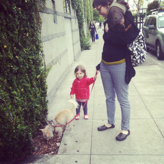 Harriet Walking the Dogs